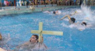 Beograd: Bogojavljensko plivanje za Časni krst 2020