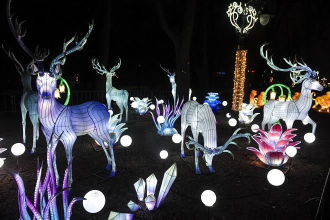 Kineski festival svetla 2020 u Beogradu i Novom Sadu