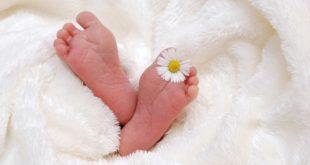 Podela bebi paketa (foto: Pixabay)