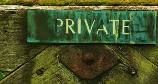 Digitalna privatnost podrazumeva da sami postavite granice (foto: PublicDomainPictures/Pixabay)