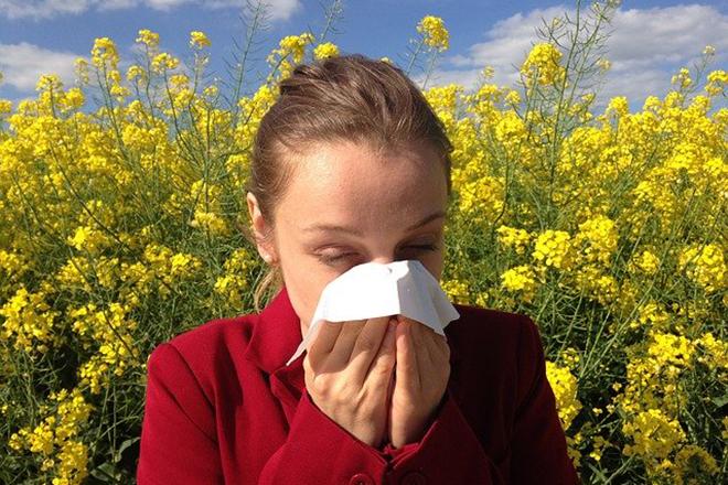 Alergija - ako baš mora napolju, ne mora u stanu... (foto: cenczi/Pixabay)