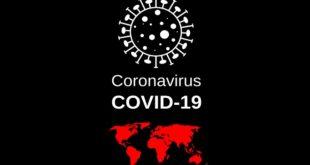 Ukoliko imate rešenje za suzbijanje posledica korona virusa COVID-19... (ilustracija: Pixabay)