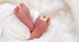 Da li znate... da je pet trudnica prošle noći rodilo blizance (foto: Pixabay)