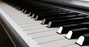 Guarnerius: Online koncert kamerne muzike (foto: Pixabay)
