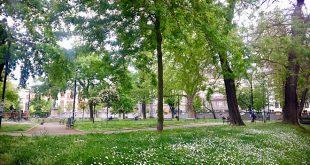 Vesti dana, 12. maj 2020; Beograd, Srbija, svet (foto: Aleksandra Prhal)