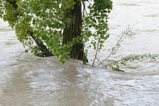 Da li znate... da je u Ljuboviji za 24 sata palo 210 litara kiše (foto: Pixabay)