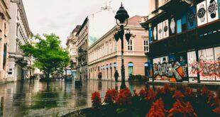 Vesti dana, 3. jun 2020. Beograd, Srbija, svet (foto: Aleksandra Prhal)