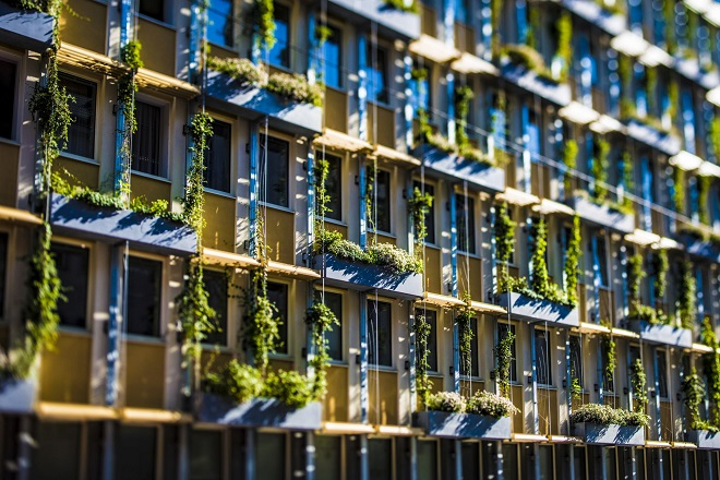 Beč: Zelene fasade u borbi protiv letnje vrućine (foto: © Wiener Wasser/Novotny)