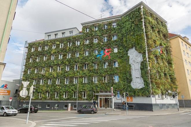 Beč: Zelene fasade u borbi protiv letnje vrućine (foto: © Richard Schmögner)
