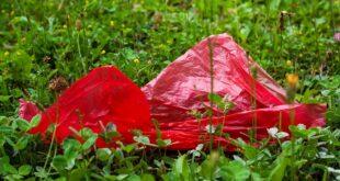 Međunarodni dan bez plastičnih kesa (foto: Pixacbay)