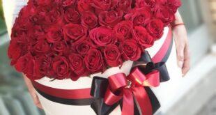 Pokloni: 101 RUŽA JE UVEK IN!