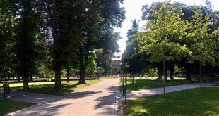 Da li znate... da je iz beogradskih parkova ukradeno čak 940 sadnica ukrasnog cveća (foto: Aleksandra Prhal / Manjež)