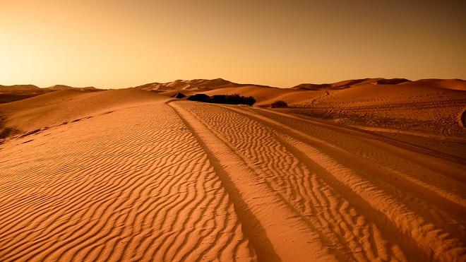 Da li znate...da je Sahara pre sto miliona godina bila močvara (foto: Pixabay)