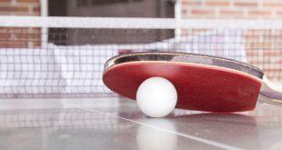 Prvenstvo Beograda u stonom tenisu za učenike (foto: Pixabay)