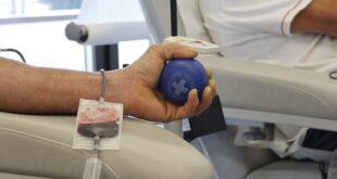 Institut za transfuziju krvi Srbije - dobrovoljno davanje krvi (foto: Pixabay)