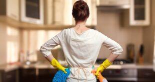 Da li znate... da bi svaka žena u Srbiji za rad u kući mogla da zaradi 6.560 evra godišnje (foto: perfectlab / Shutterstock)