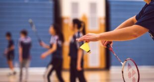 Trofej Beograda 2020 u badmintonu (foto: Pixabay)