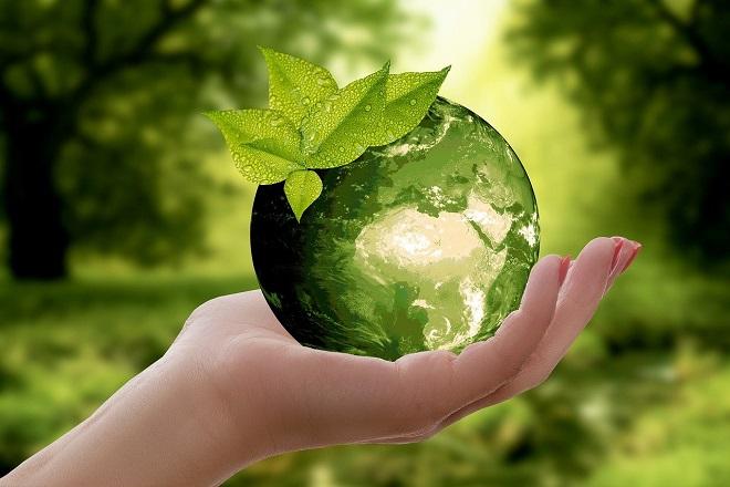 Međunarodni ekološki kalendar i drugi značajni datumi (foto: Pixabay)