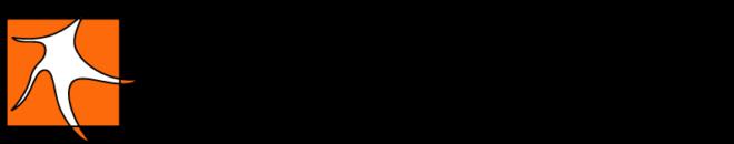 Dermatim - logo