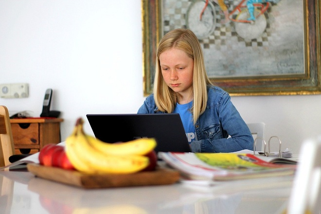 Raspored časova: Online i TV nastava za učenike osnovnih škola (foto: Pixabay)