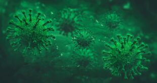 Da li znate... prvi smrtni slučaj od virusa korona (ilustracija: Adam Vilimek / Shutterstock)