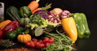 Istraživanje o hrani kao otpadu (foto: Diego Passadori)
