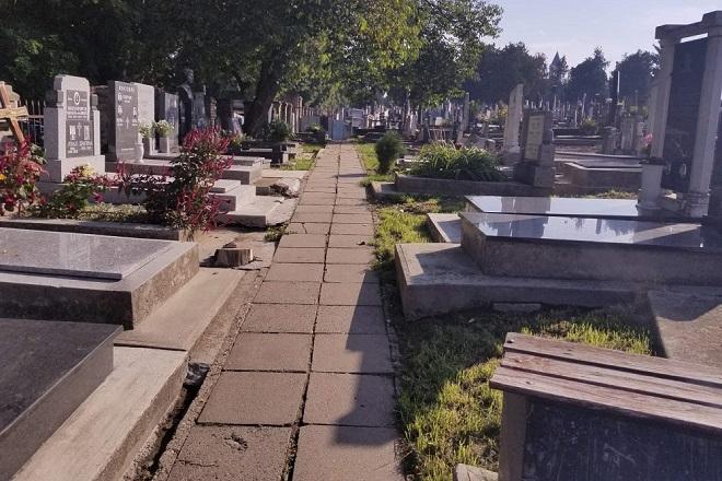 Sahrane i kremacije u Beogradu: Zemunsko groblje (foto: Nemanja Nikolić)