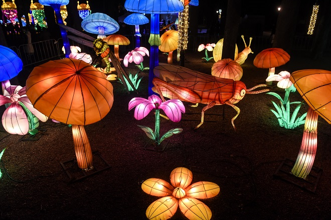 Sedam dana u Beogradu, 11-17. februar 2021: Kineski festival svetla (foto: Đorđe Tomić)