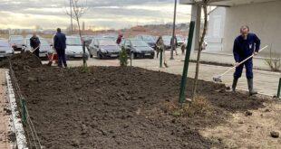 "Zelena oaza protiv betona (foto: Inicijativa ""Zelena oaza"")"