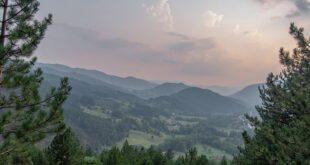 Da li znate... da Srbija ima (samo) oko 30 odsto površine pod šumom (foto: Pixabay)