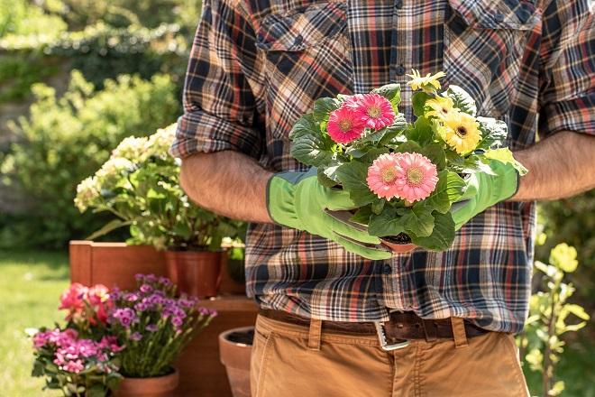 Prolećni sajam cveća u parku Manjež (foto: Pixabay)
