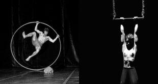 Cirkusfera u Bitef teatru: Gostuju mladi umetnici i trupe iz Evrope
