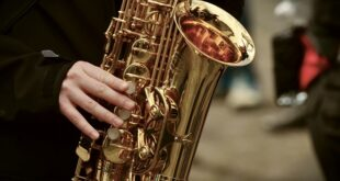 Muzikom kroz muzej: Banda saksofonista (foto: Pixabay)
