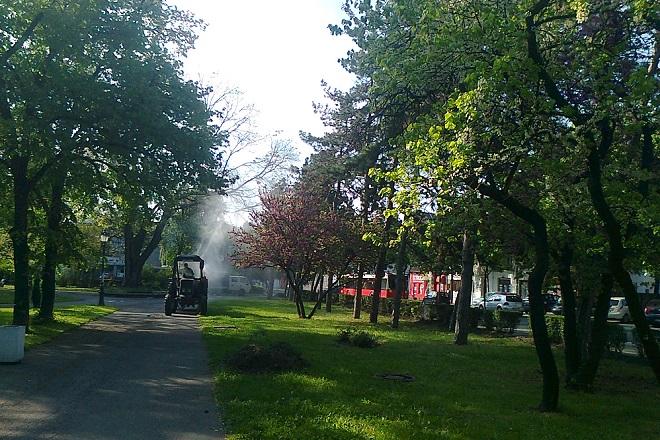 """Akcija zaštite stabala od bolesti i štetočina u Beogradu (foto: JKP """"Zelenilo - Beograd; Gradski park)"""