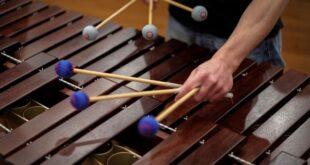 Beogradska filharmonija: perkusije (foto: BGF)