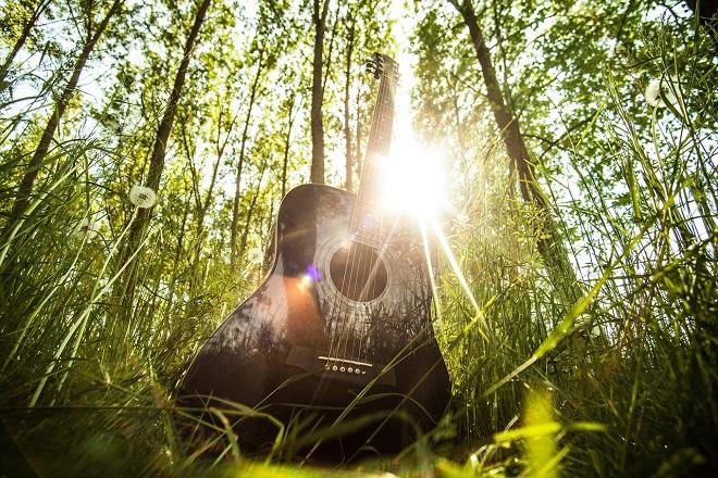 Sedam dana u Beogradu (27. maj - 2. jun 2021): Guitar Art Festival (foto: Pixabay)