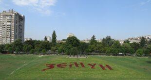 "Cvetnjak u obliku natpisa ""Zemun"" (foto: J. D.)"