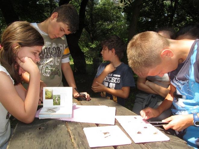 Dečji kulturni centar Beograd: Besplatni letnji programi za decu